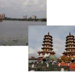 pond-tower
